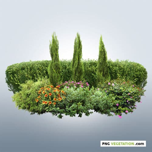 png hedge with flowerbed