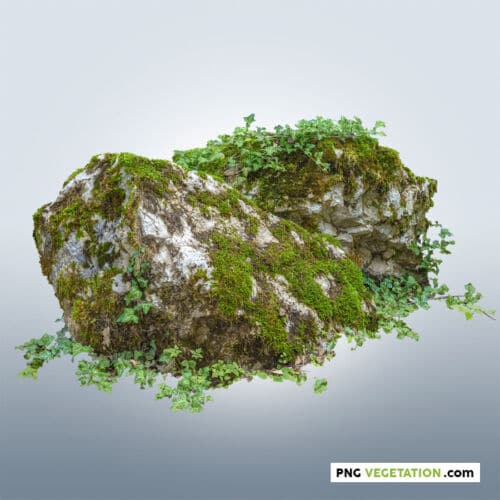 cutout mossy rock with ivy on top